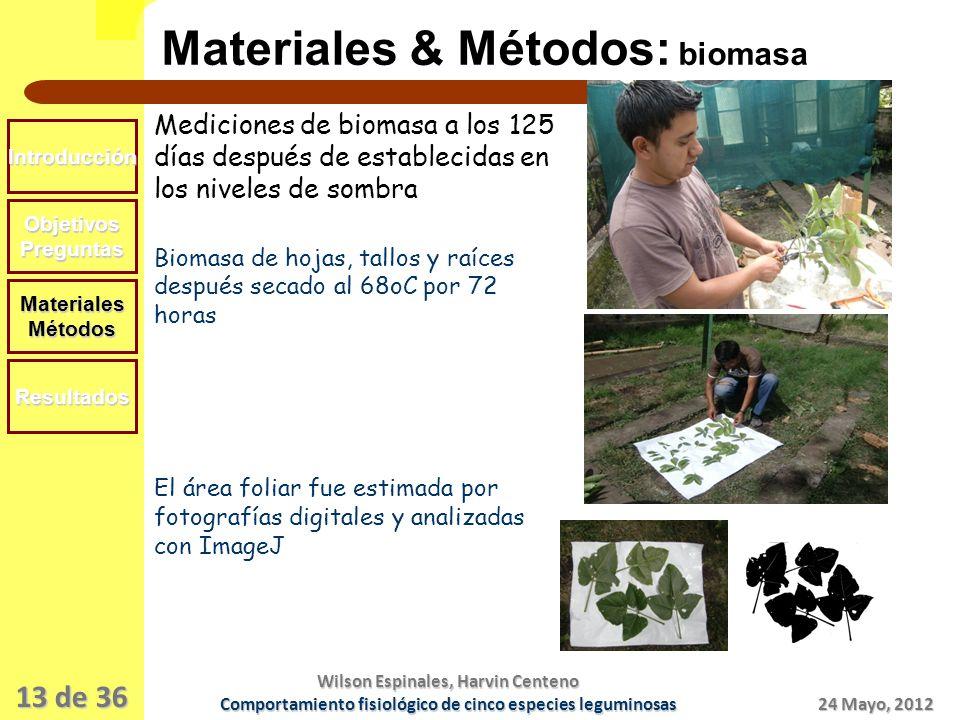 Materiales & Métodos: biomasa