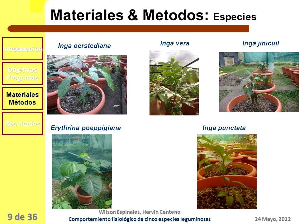 Materiales & Metodos: Especies
