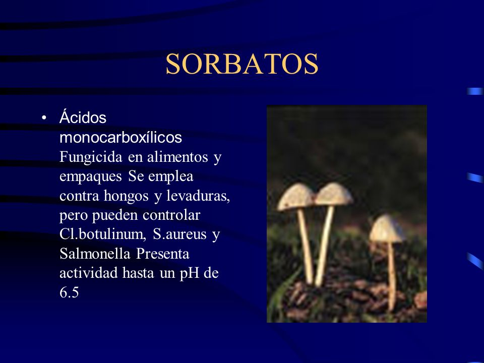 SORBATOS