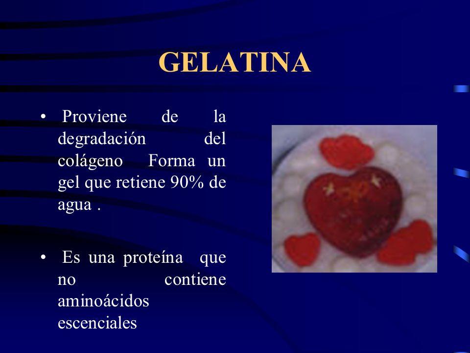GELATINA Proviene de la degradación del colágeno Forma un gel que retiene 90% de agua .