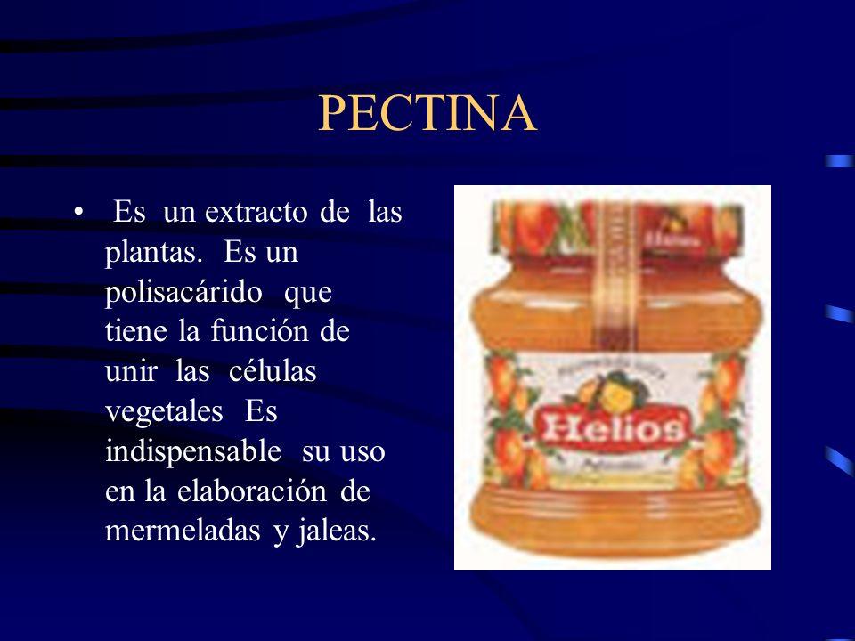 PECTINA
