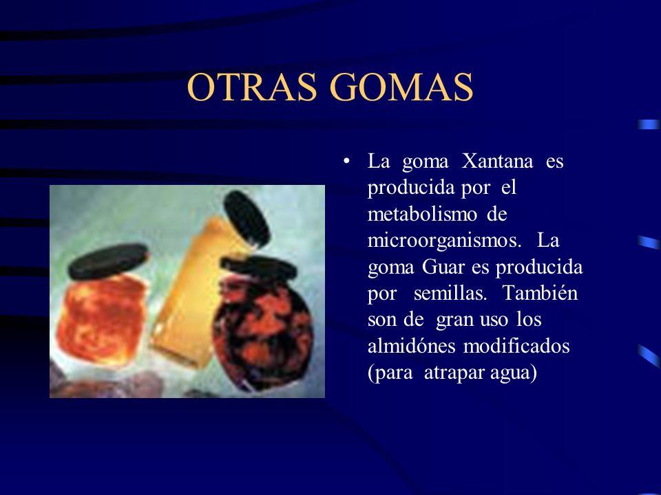 OTRAS GOMAS