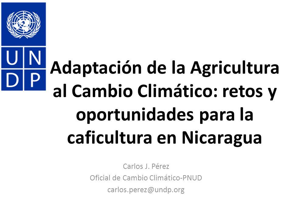 Carlos J. Pérez Oficial de Cambio Climático-PNUD carlos.perez@undp.org