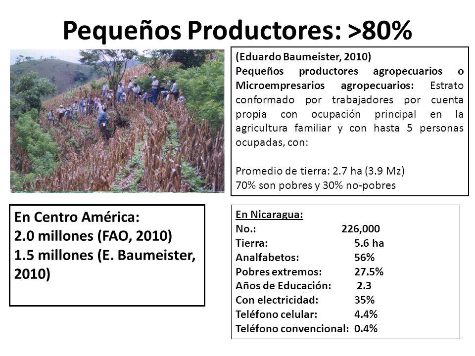 Pequeños Productores: >80%