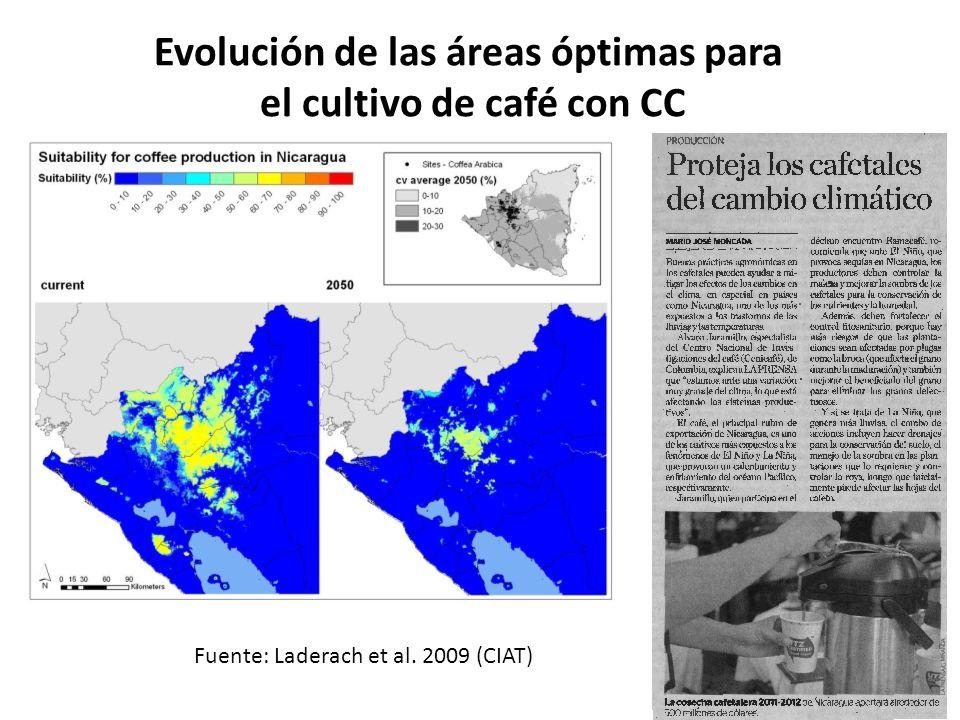 Evolución de las áreas óptimas para el cultivo de café con CC