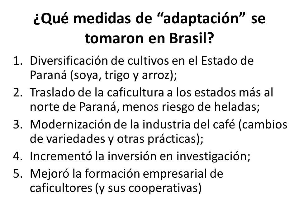 ¿Qué medidas de adaptación se tomaron en Brasil