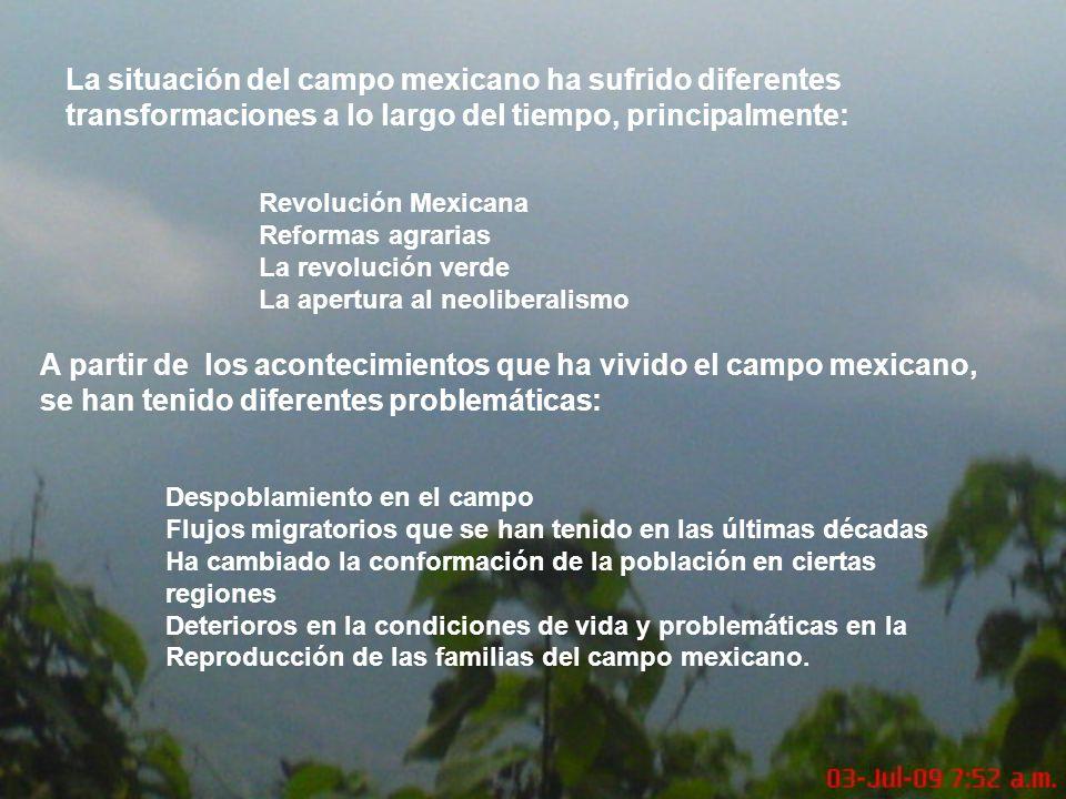 La situación del campo mexicano ha sufrido diferentes transformaciones a lo largo del tiempo, principalmente: