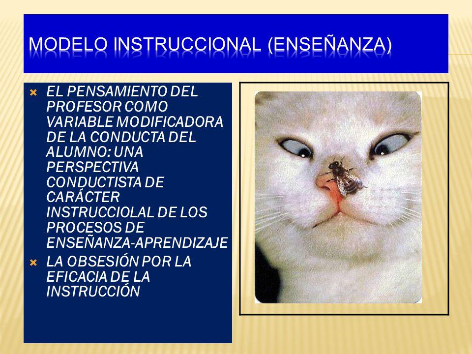 Modelo instruccional (ENSEÑANZA)