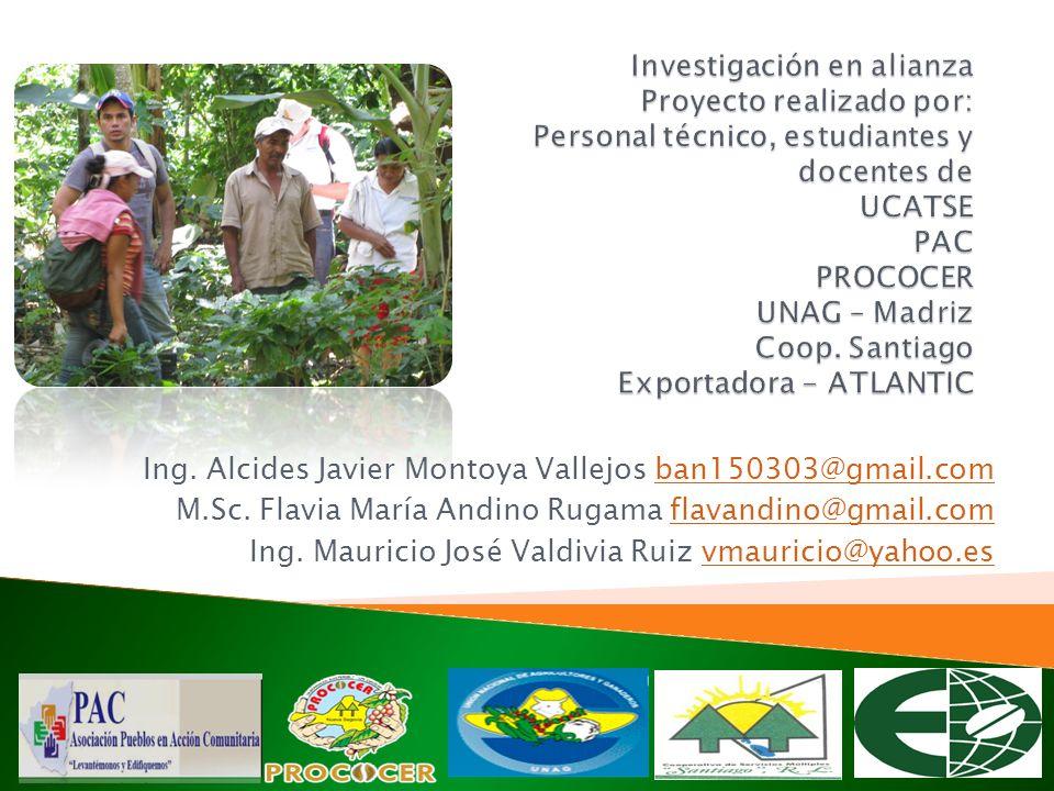 Investigación en alianza Proyecto realizado por: Personal técnico, estudiantes y docentes de UCATSE PAC PROCOCER UNAG – Madriz Coop. Santiago Exportadora - ATLANTIC