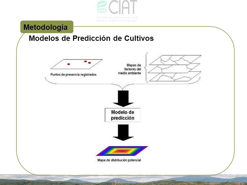 Modelos de Predicción de Cultivos