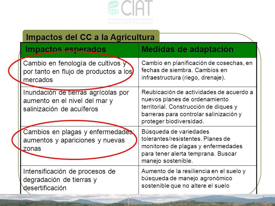 Impactos del CC a la Agricultura Impactos esperados