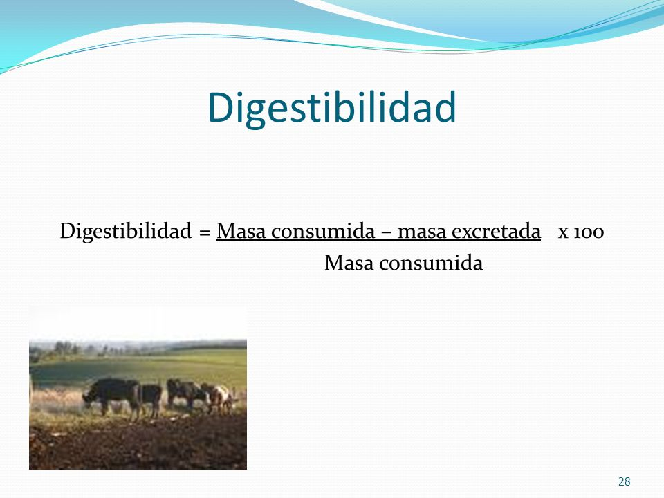 Digestibilidad = Masa consumida – masa excretada x 100