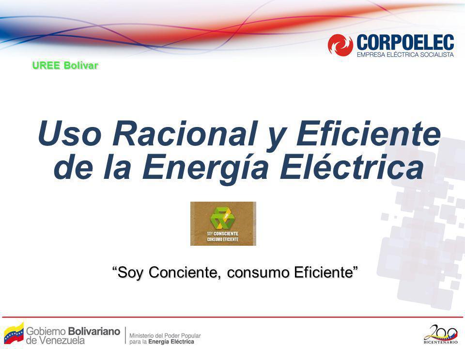 Uso Racional y Eficiente de la Energía Eléctrica