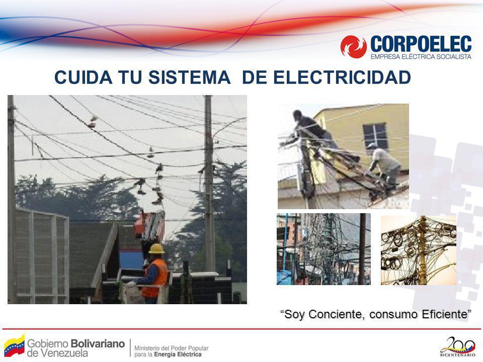 CUIDA TU SISTEMA DE ELECTRICIDAD