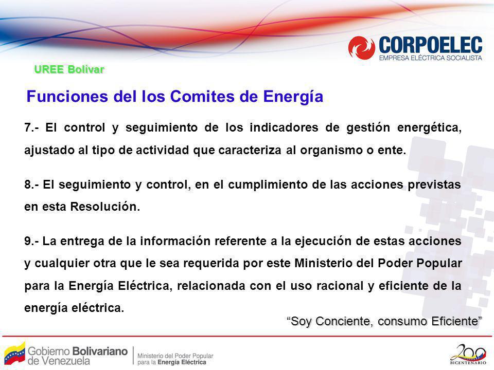Funciones del los Comites de Energía
