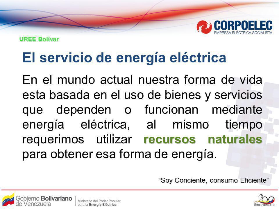 El servicio de energía eléctrica