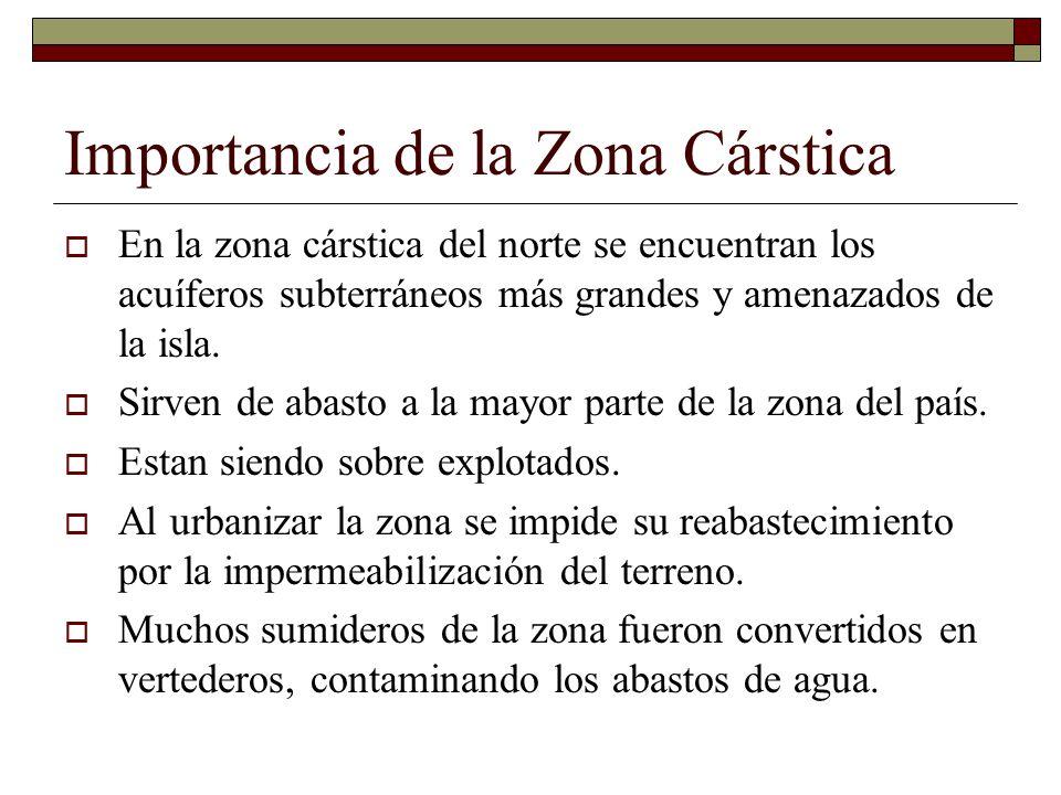 Importancia de la Zona Cárstica