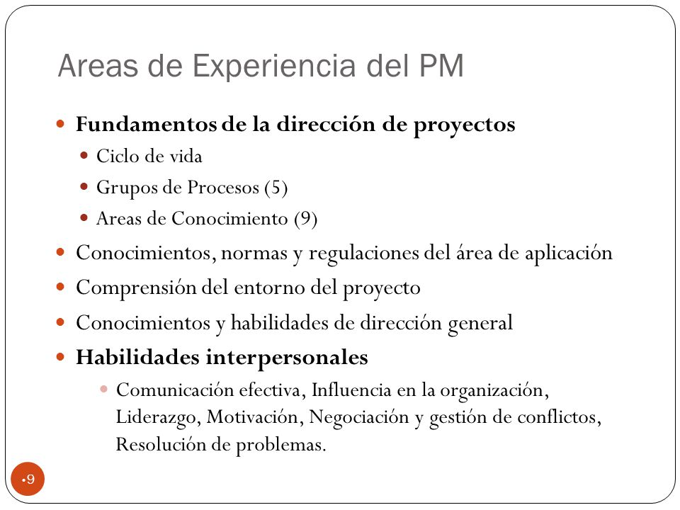 Areas de Experiencia del PM
