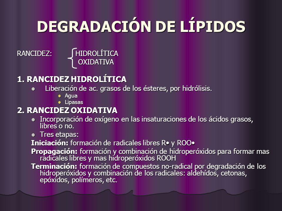 DEGRADACIÓN DE LÍPIDOS