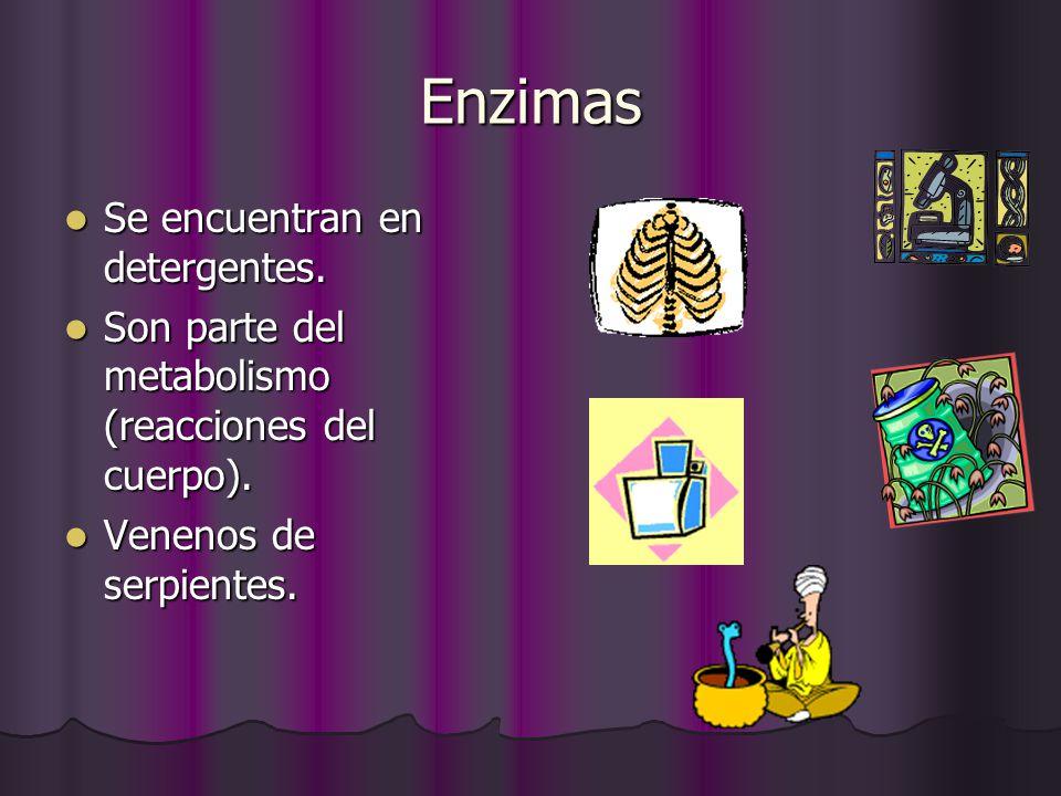 Enzimas Se encuentran en detergentes.