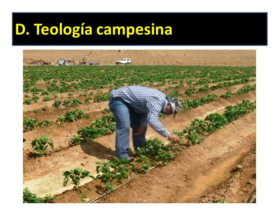 D. Teología campesina