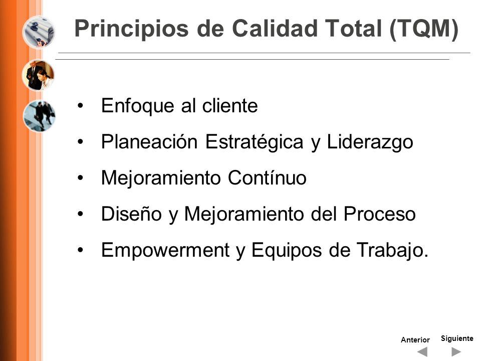 Principios de Calidad Total (TQM)