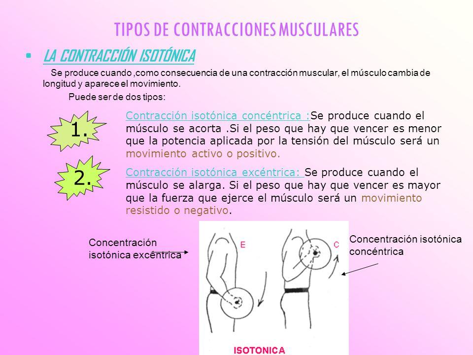 TIPOS DE CONTRACCIONES MUSCULARES