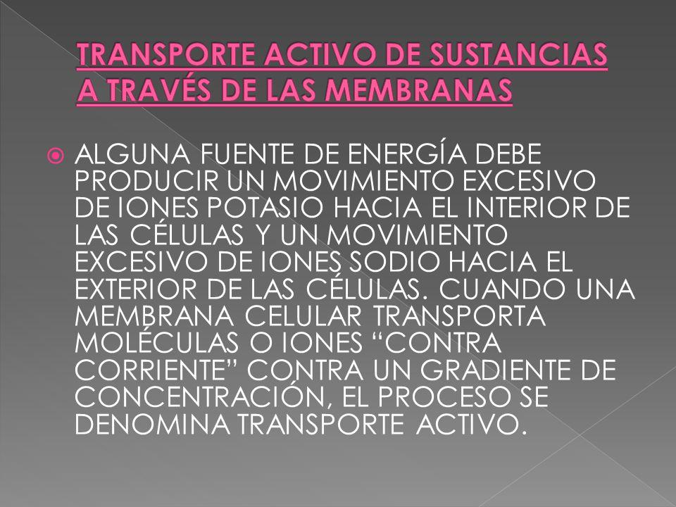 TRANSPORTE ACTIVO DE SUSTANCIAS A TRAVÉS DE LAS MEMBRANAS