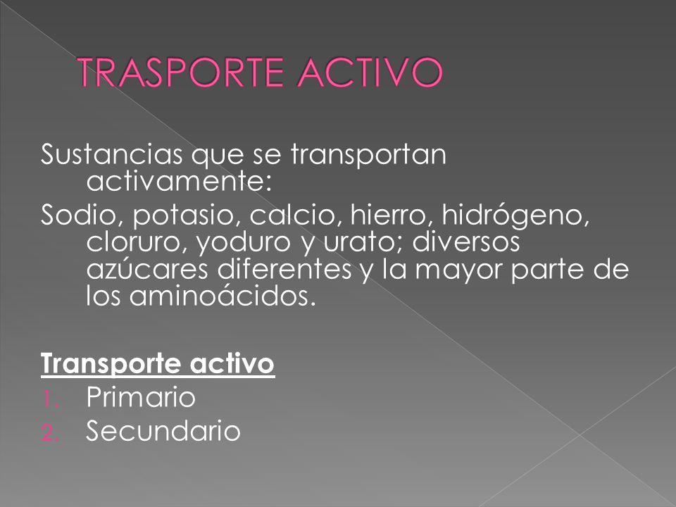 TRASPORTE ACTIVO Sustancias que se transportan activamente: