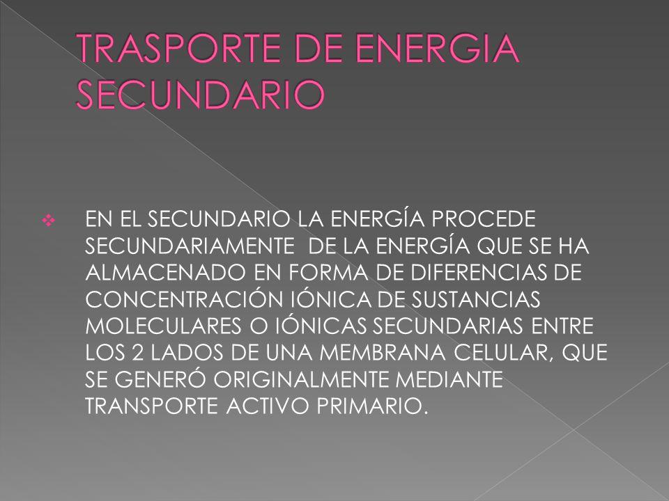 TRASPORTE DE ENERGIA SECUNDARIO