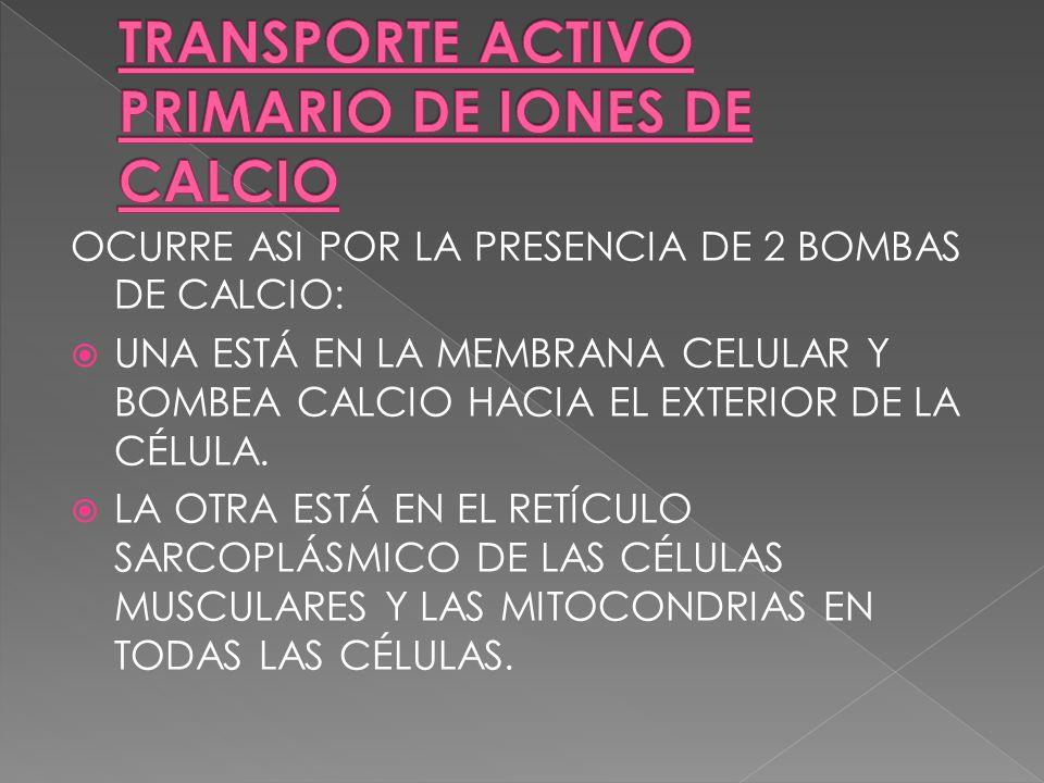 TRANSPORTE ACTIVO PRIMARIO DE IONES DE CALCIO