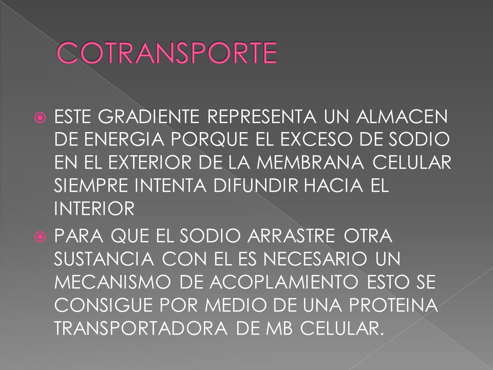 COTRANSPORTE