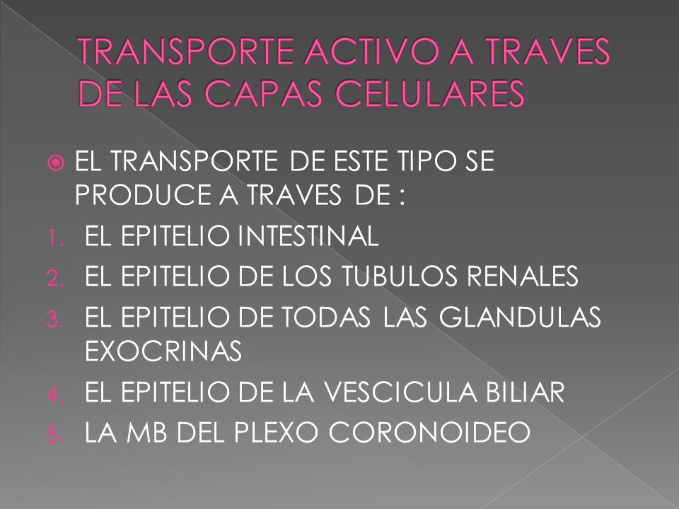 TRANSPORTE ACTIVO A TRAVES DE LAS CAPAS CELULARES