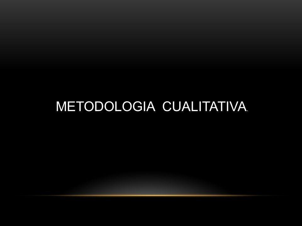 METODOLOGIA CUALITATIVA.