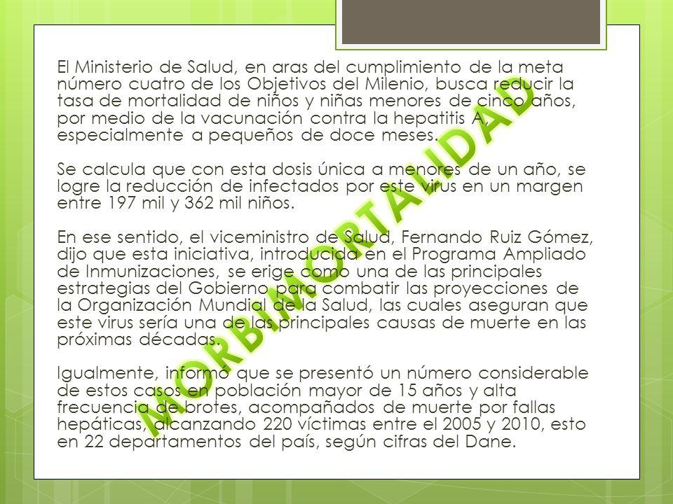 El Ministerio de Salud, en aras del cumplimiento de la meta número cuatro de los Objetivos del Milenio, busca reducir la tasa de mortalidad de niños y niñas menores de cinco años, por medio de la vacunación contra la hepatitis A, especialmente a pequeños de doce meses. Se calcula que con esta dosis única a menores de un año, se logre la reducción de infectados por este virus en un margen entre 197 mil y 362 mil niños. En ese sentido, el viceministro de Salud, Fernando Ruiz Gómez, dijo que esta iniciativa, introducida en el Programa Ampliado de Inmunizaciones, se erige como una de las principales estrategias del Gobierno para combatir las proyecciones de la Organización Mundial de la Salud, las cuales aseguran que este virus sería una de las principales causas de muerte en las próximas décadas. Igualmente, informó que se presentó un número considerable de estos casos en población mayor de 15 años y alta frecuencia de brotes, acompañados de muerte por fallas hepáticas, alcanzando 220 víctimas entre el 2005 y 2010, esto en 22 departamentos del país, según cifras del Dane.