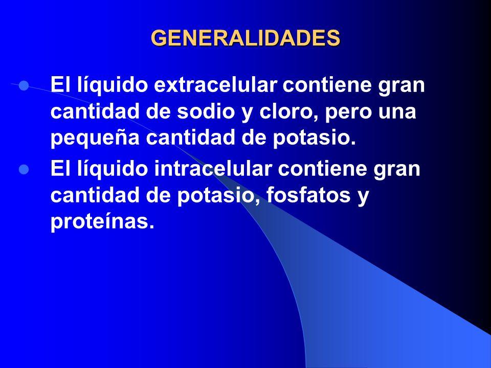 GENERALIDADES El líquido extracelular contiene gran cantidad de sodio y cloro, pero una pequeña cantidad de potasio.