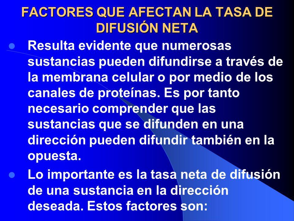 FACTORES QUE AFECTAN LA TASA DE DIFUSIÓN NETA