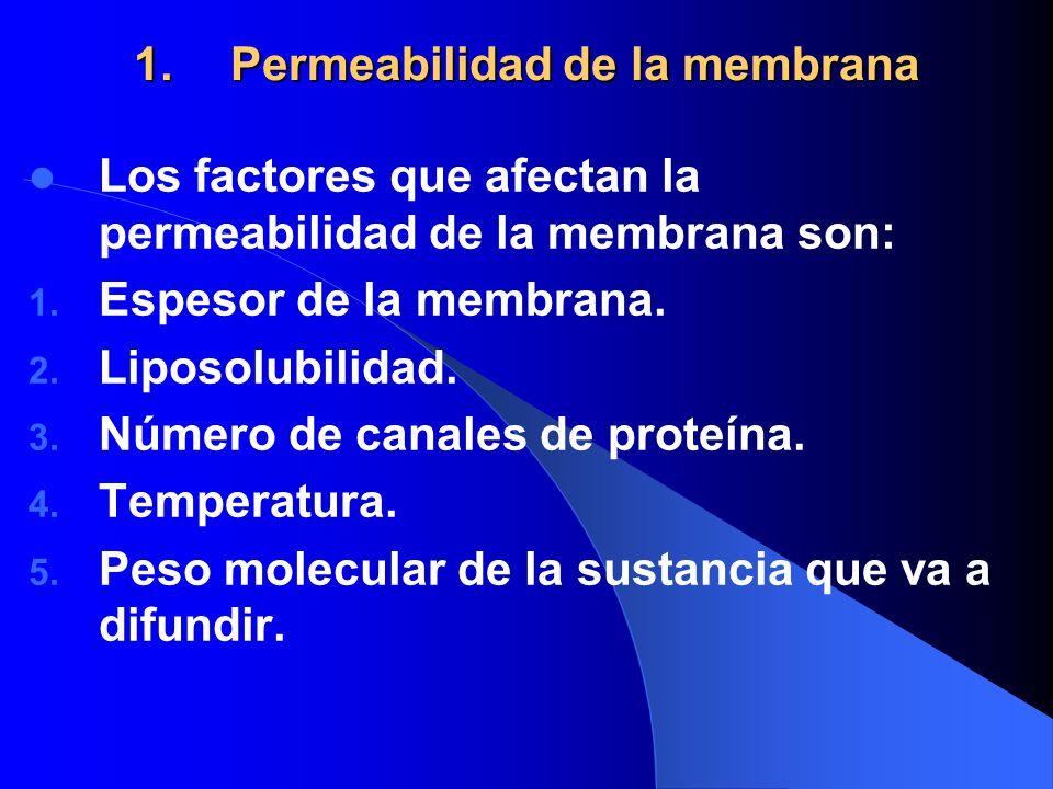 Permeabilidad de la membrana