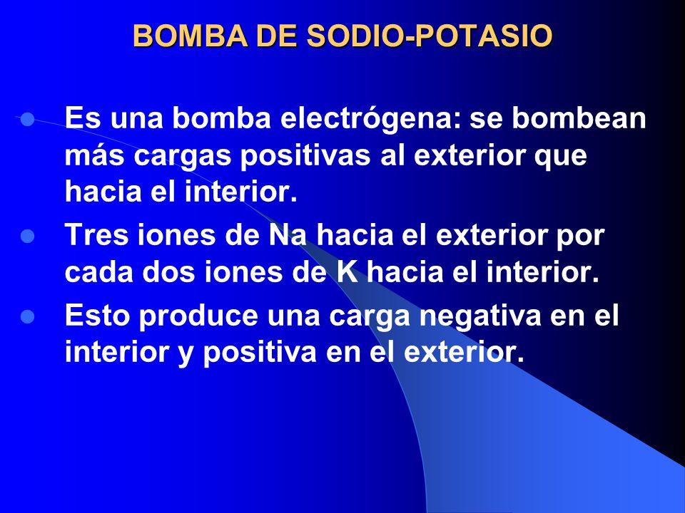 BOMBA DE SODIO-POTASIO