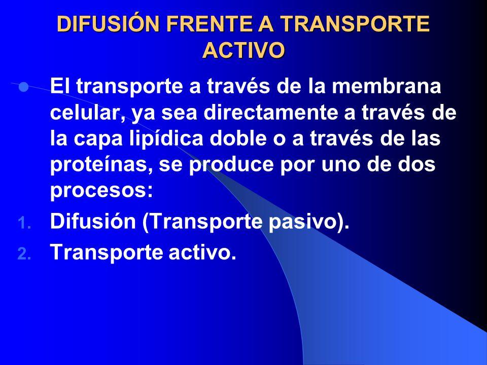 DIFUSIÓN FRENTE A TRANSPORTE ACTIVO