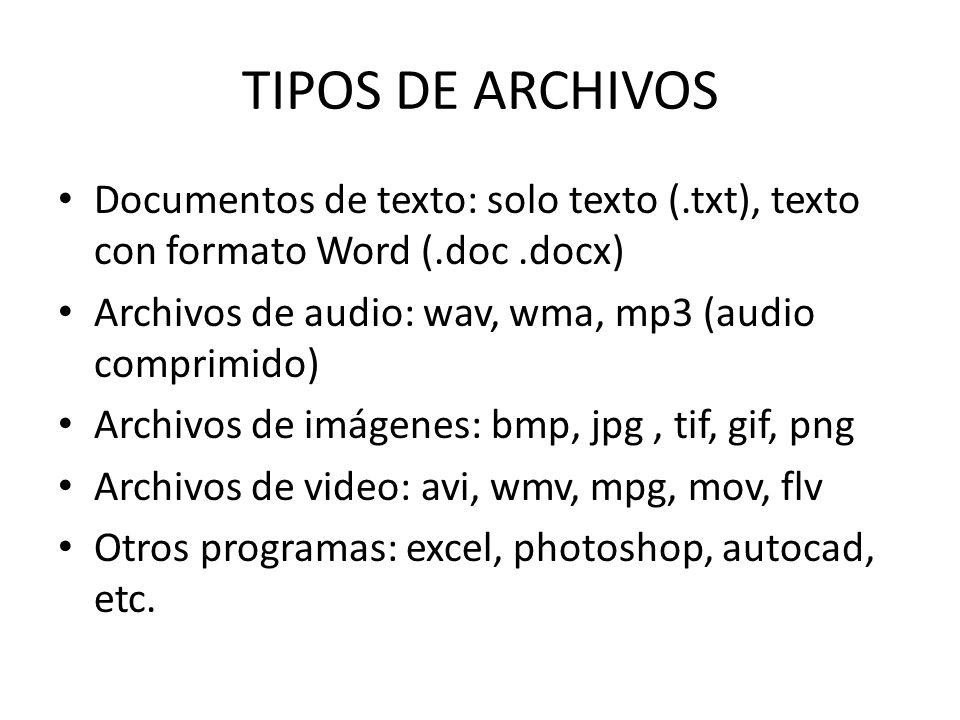 TIPOS DE ARCHIVOS Documentos de texto: solo texto (.txt), texto con formato Word (.doc .docx) Archivos de audio: wav, wma, mp3 (audio comprimido)