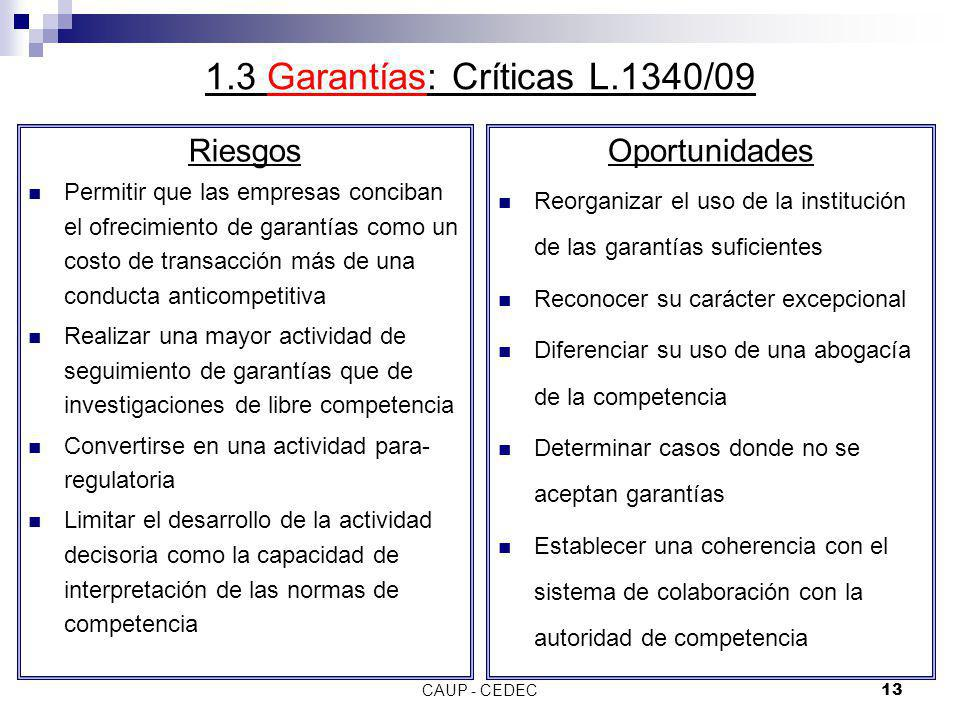 1.3 Garantías: Críticas L.1340/09