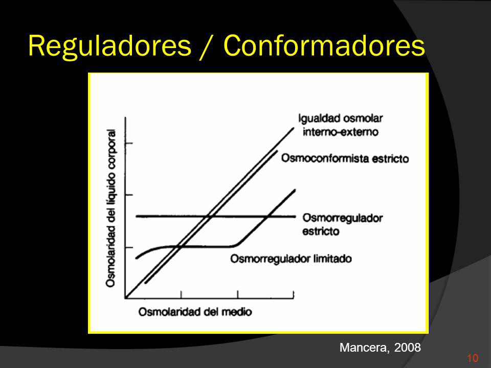 Reguladores / Conformadores