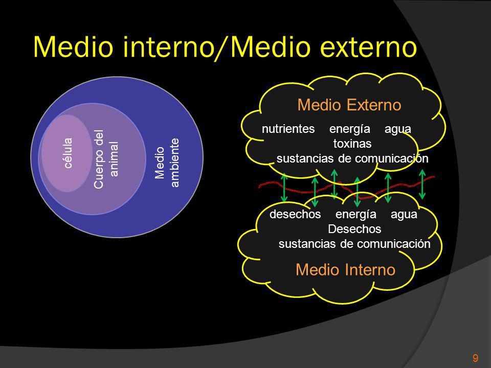 Medio interno/Medio externo