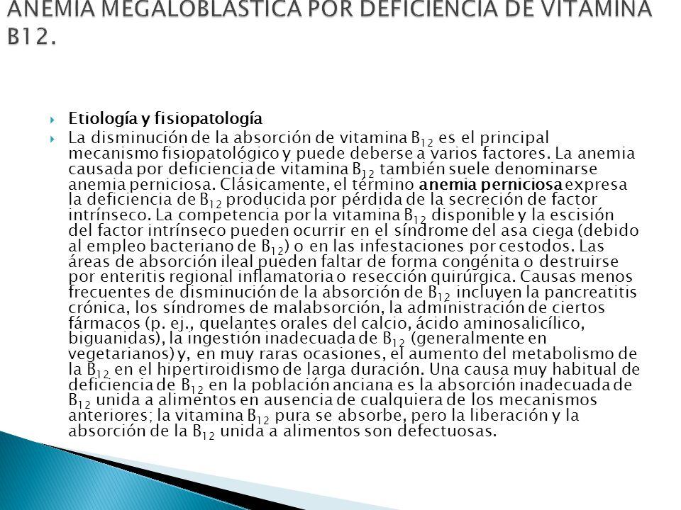 ANEMIA MEGALOBLÁSTICA POR DEFICIENCIA DE VITAMINA B12.