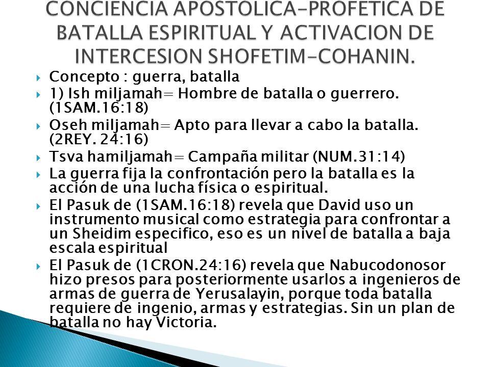 CONCIENCIA APOSTOLICA-PROFETICA DE BATALLA ESPIRITUAL Y ACTIVACION DE INTERCESION SHOFETIM-COHANIN.
