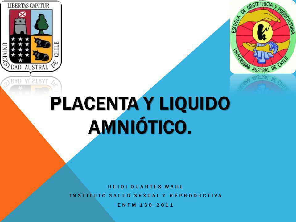 Placenta y liquido amniótico.