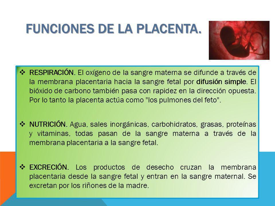 FUNCIONES DE LA PLACENTA.