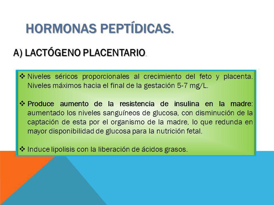 HORMONAS PEPTÍDICAS. A) LACTÓGENO PLACENTARIO.