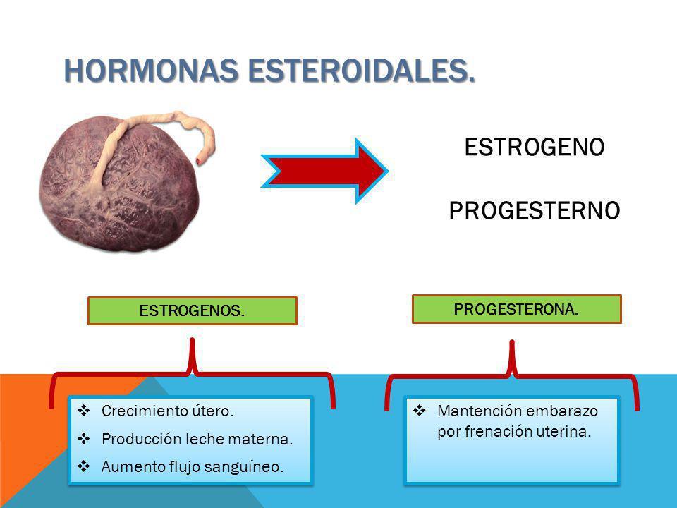 HORMONAS esteroidales.